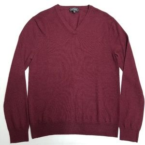 Express Extra Fine Merino Wool, Vneck Sweater